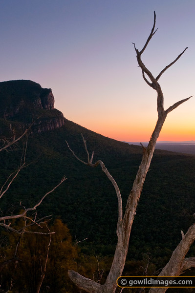 Sunrise over Mount Abrupt, Grampians. Taken from The Picanninny.