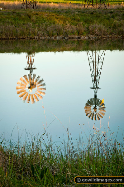 Windmills at sunset, reflecting in the Waranga Western Channel near Mathiesons