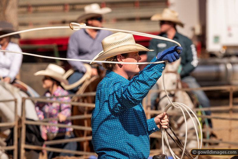 Great Western Rodeo 2019