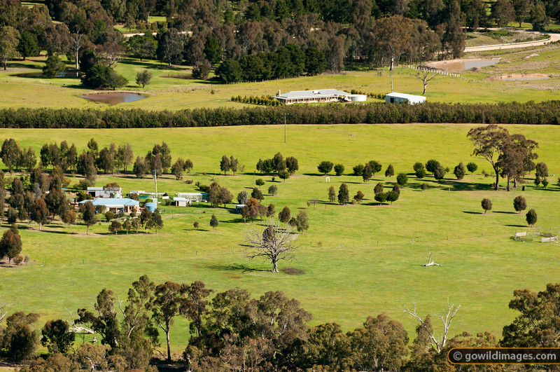 Rural farmland view from Mt Ida towards Heathcote.