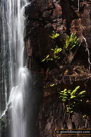 Mackenzie Falls, Northern Grampians