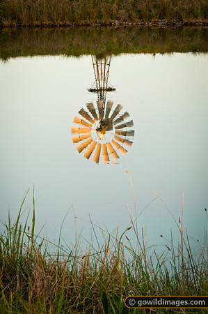 Windmill reflected in the Waranga Western Channel near Mathiesons