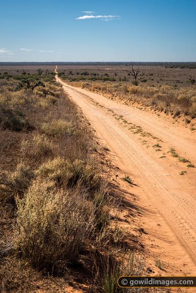 Walla Walla Track