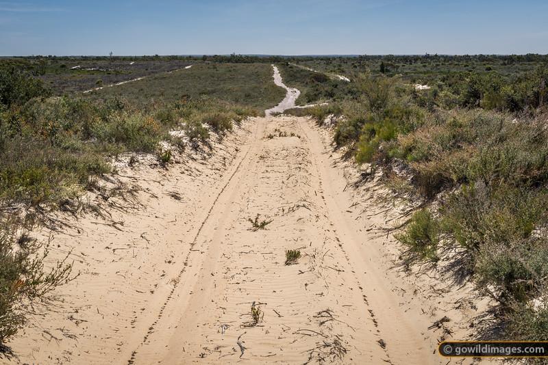 Desert 4WD track near Pomponderoo Hill, Little Desert NP