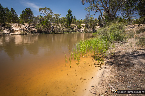 Horseshoe Bend, Wimmera River, Little Desert NP