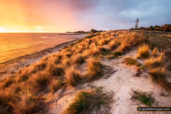 Rottnest Dunes