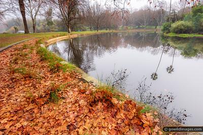 Winter in Hyde Park