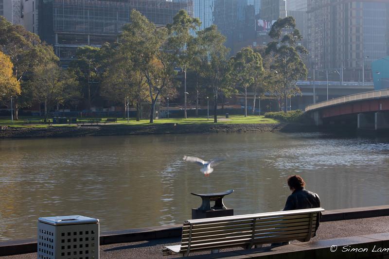 Melbourne_2008 05_1274