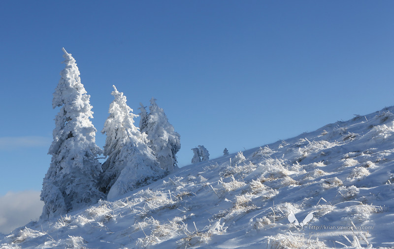 December 2012. Snow shoe tour onto the Schwarzkogel, from Hengstpass.