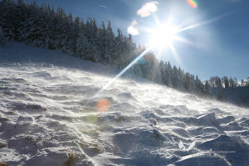 December 2012. Snow shoe tour onto the Schwarzkogel, from Hengstpass.
