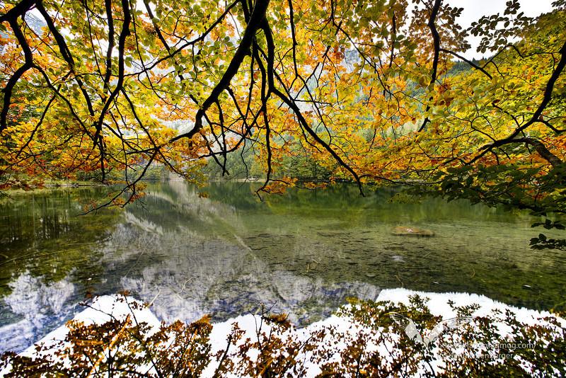 October 2010. Hinterer Langbathsee, near Ebensee.