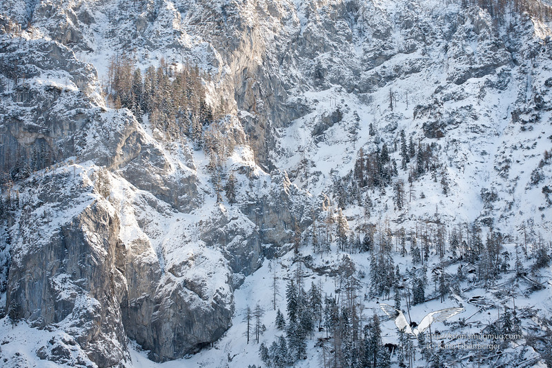 "December 2010. A world of the vertical. The ""Riegerin"" in the Brunntal near Wildalpen."