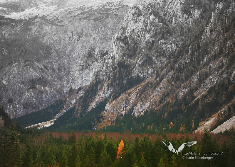 Autumn in the Brunntal near Wildalpen.