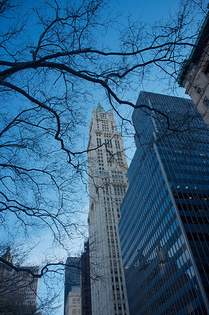 Autour du Woolworth Building