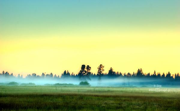 foggy colors