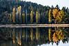 autumn reflections-2393
