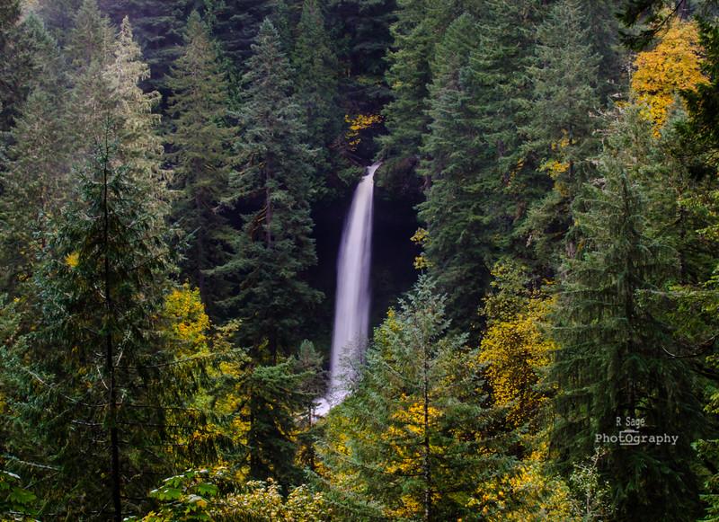 north falls view-7185