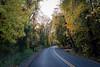 autumn drive-2484