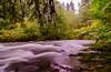 silver falls fall DSC_6351-2