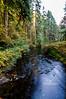 fall creek DSC_6944