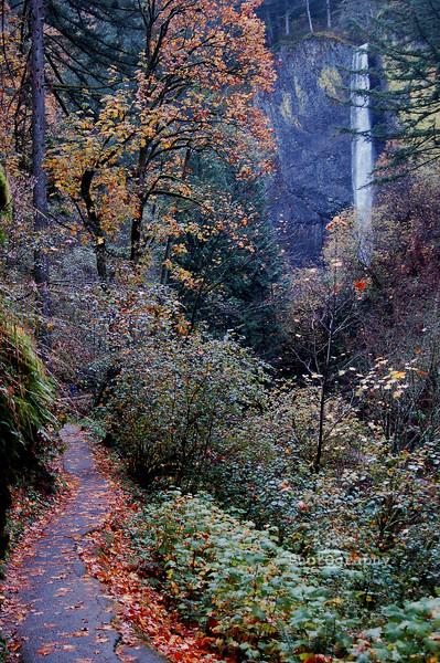 gorge falls autumn
