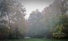 foggy fall bridge 2-5263