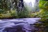 silver falls fall DSC_6351