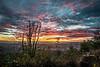 bald peak sunset-4528