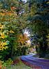 autum road 2012_DSC0206