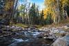 tahoe creek-5056