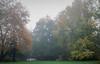 foggy fall bridge-5257