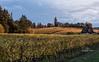 dundee vineyard-5162