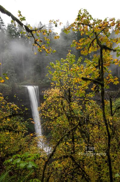 south falls autumn-7242