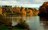 willamette bridge_DSC0105 copy