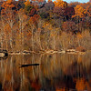 Fall foliage, Virginia<br /> Potomac River just upstream of Great Falls<br /> November 2008