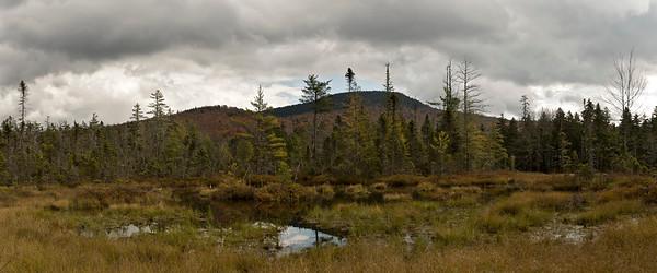 Sawyer River Trail 24x10