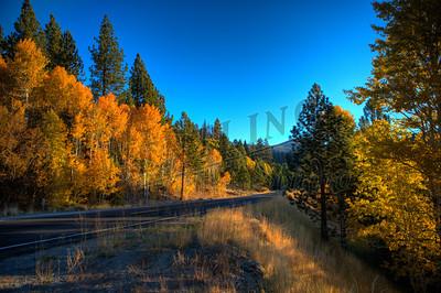 Autumn-9136_7_8_tonemapped-2