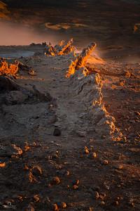Fire Ridge