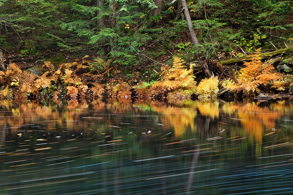 Autumn Moving Water 2009