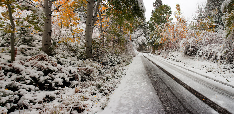 A very early snowstorm blanketed the mountains east of Salt Lake City in early October, 2011.