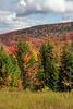 HighlandScenicHighwayPocahontasCoWV-10-18-16-SJS-030