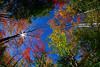 LittleCanaanWMA-Oct2015-sjs-014