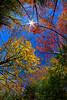 LittleCanaanWMA-Oct2015-sjs-015
