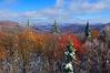 FallSnowHighlandScenicHighway-99