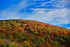 HighlandScenicHighway-Oct2015-sjs-009