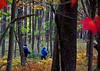 HikersTuckerCoWV-Oct2015-sjs-001