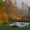 Pond in Fort Valley with Autumn Color