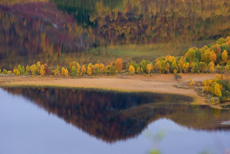 Autumn stillness II
