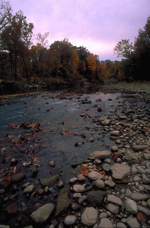 Autumn in Indiana