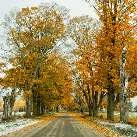 Autumn in New England 2015
